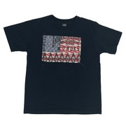 GUNZ STARS&STRIPES COLLAGE SHORT SLEEVE TEE (半袖T) -441G098-